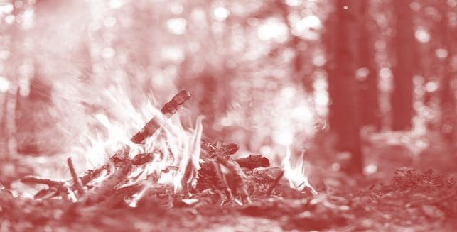 Revoca dello stato di massima pericolosità per gli incendi boschivi su tutto il territorio regionale del Piemonte a partire dal 15/04/2021.